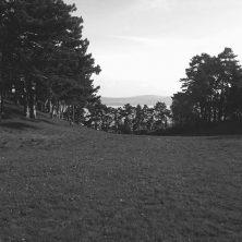 El lago, un cuento de Amelia Beatriz Bartozzi